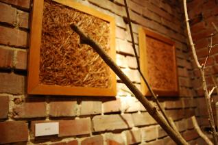 その他の活動_2011年 札幌市 土壁展
